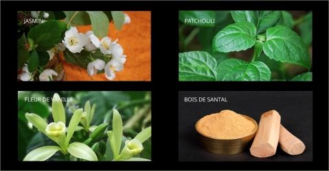 Bougie parfumée au jasmin et au bois de santal - L'Orientale Epicée - Lorenza-difilippo.fr