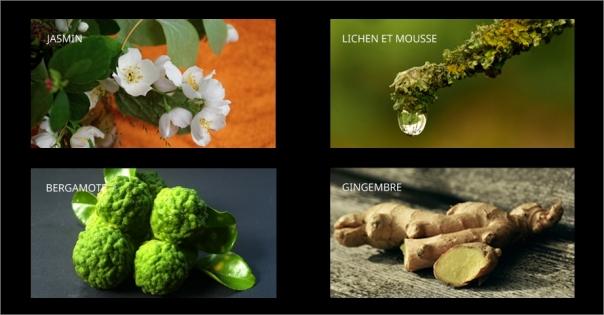 Parfum d'ambiance au jasmin et à la bergamote - Le Bel Indifférent - Lorenza-difilippo.fr