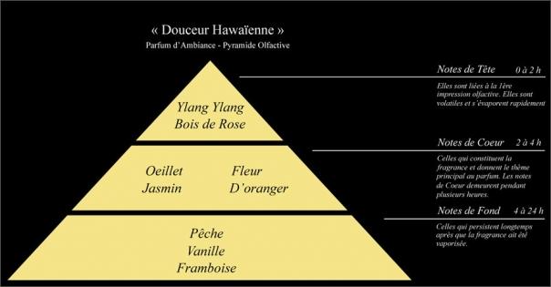 Pyramide olfactive Parfum d'intérieur Douceur Hawaïenne - Lorenza-difilippo.fr