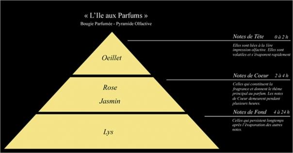 Pyramide olfactive bougie parfumée l'Ile aux parfums - Lorenza-difilippo.fr